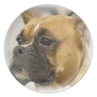 Placa frontal del perro del boxeador plato para fiesta