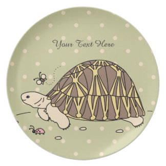 Placa irradiada personalizable de la tortuga plato