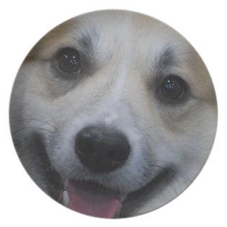 Placa islandesa del perro pastor plato para fiesta