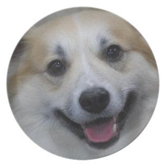 Placa islandesa sonriente del perro pastor platos