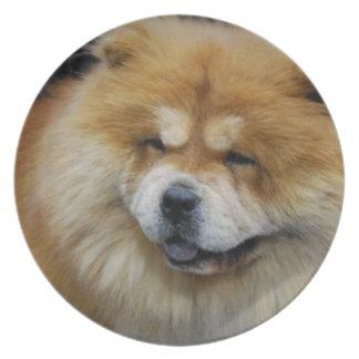 Placa linda del perro chino de perro chino platos