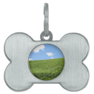 Placa Para Mascotas Campo herboso en la colina del balanceo contra el