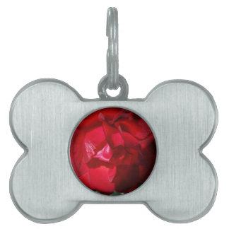 Placa Para Mascotas El rojo del otoño