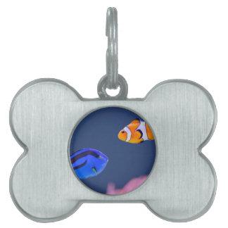 Placa Para Mascotas Natación de los pescados del surgeonfish y del
