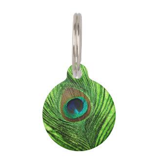 Placa Para Mascotas Verde lima del pavo real