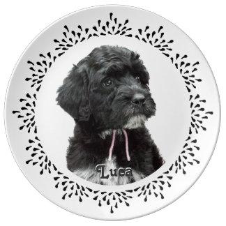 Placa portuguesa del perro de agua de la lágrima plato de cerámica