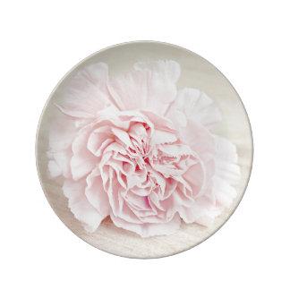 Placa rosada bonita de la porcelana del clavel plato de porcelana
