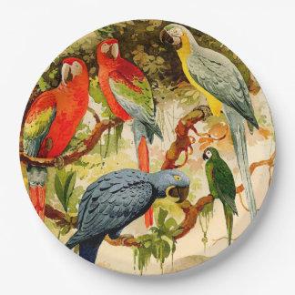 Placas de papel de la fauna de los animales de los plato de papel