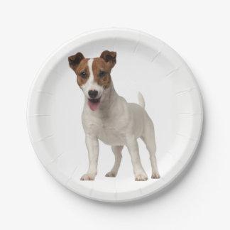Placas de papel del perro de perrito de Jack Plato De Papel