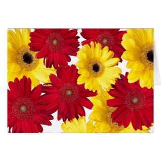 Placer rojo y amarillo de la margarita de Gerber Tarjeta De Felicitación