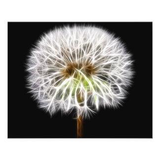 Planta blanca de la flor del diente de león folleto 11,4 x 14,2 cm