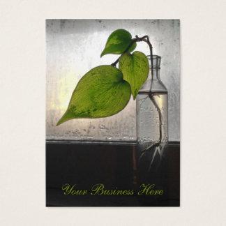 Planta de arraigo en una botella de cristal clara tarjeta de visita