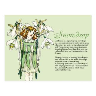 Planta Info del chica de Snowdrops del vintage del Postal