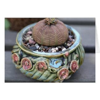 Planta por la planta perfecta - Notecard del Tarjeta De Felicitación