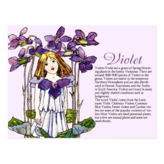 Planta violeta Info del chica del vintage del Postal
