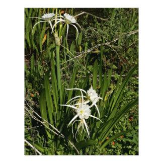 Planta y flores del lirio de la araña tarjeta publicitaria