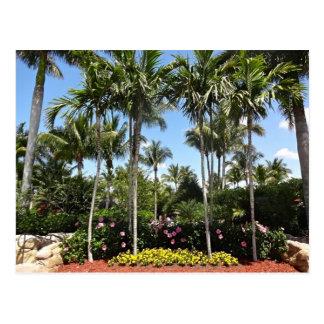 Plantación tropical Bonita Springs la Florida del Postal