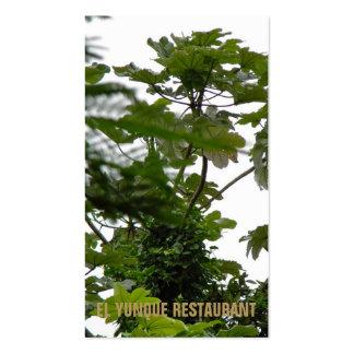 Plantas tropicales, EL Yunque Puerto Rico Tarjeta De Visita