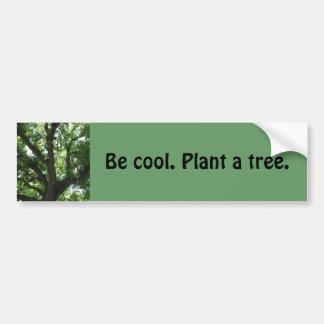 """""""Plante pegatina para el parachoques de un árbol"""" Pegatina Para Coche"""