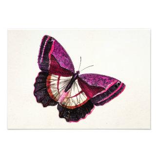 Plantilla en blanco de la mariposa 1896 rosados comunicado personalizado