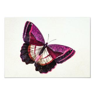 Plantilla en blanco de la mariposa 1896 rosados invitación 8,9 x 12,7 cm