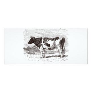 Plantilla retra de las vacas de la vaca holandesa invitación 10,1 x 23,5 cm