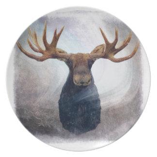Plato Alces de la aurora boreal
