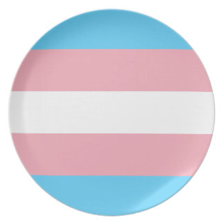 Plato Bandera del orgullo del transexual - arco iris del