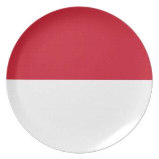 Plato Bandera nacional del mundo de Indonesia