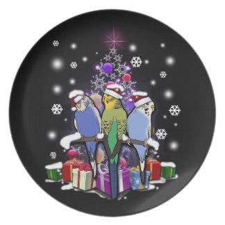 Plato Budgerigars con el navidad regalo y copos de nieve