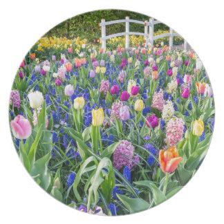 Plato Campo de flores con los jacintos y el puente de