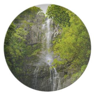 Plato Cascada en Maui Hawaii