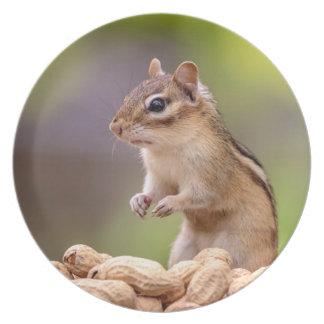 Plato Chipmunk con los cacahuetes