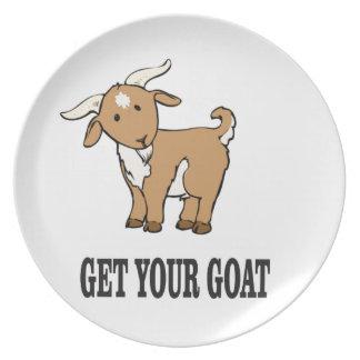 Plato consiga su chiste de la cabra