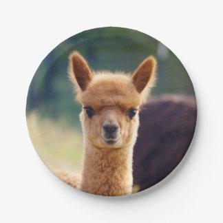 Plato De Papel Alpaca del bebé placa de papel de 7 pulgadas