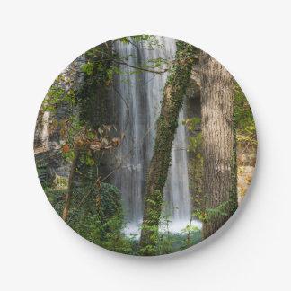 Plato De Papel Cascada en las maderas