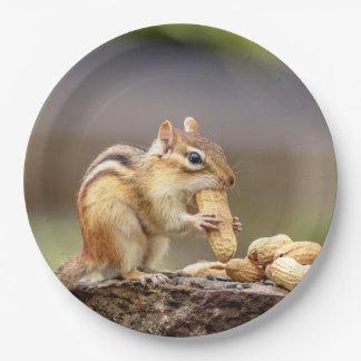 Plato De Papel Chipmunk que come un cacahuete