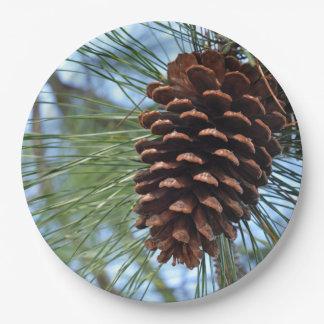Plato De Papel Cono del pino