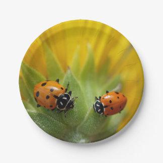 Plato De Papel Dos señora Bugs en un girasol