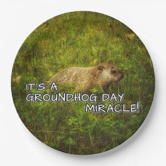 Plato De Papel Es placas de un milagro del día de la marmota