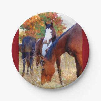 Plato De Papel Fiesta del caballo