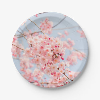 Plato De Papel Flor de cerezo rosada