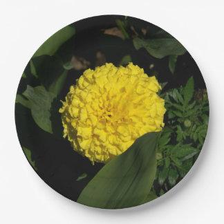 Plato De Papel Flor, placas de papel