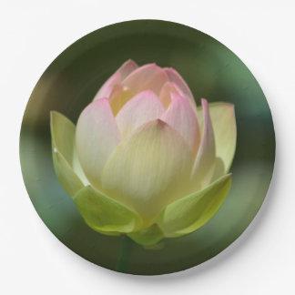 Plato De Papel Flor soñador de Lotus