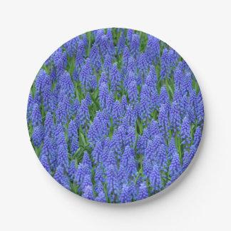 Plato De Papel Flores púrpuras de la primavera del muscari