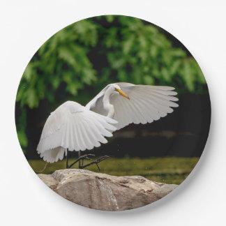 Plato De Papel Gran Egret