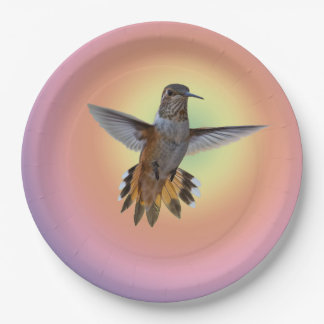 PLATO DE PAPEL HUMMIMNGBIRD