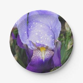 Plato De Papel Iris alemán con algunas gotas de agua