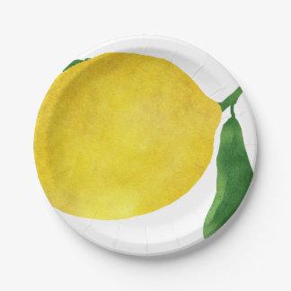 Plato De Papel Limón fresco