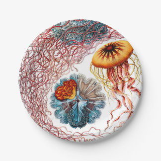 Plato De Papel Medusas de Ernst Haeckel Discomedusae